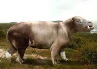 Коріфодон (Coryphodon)